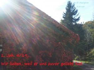 IMG-20141011-00006 (2)
